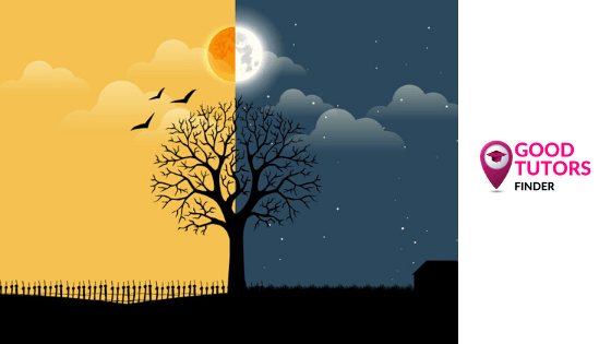 When Is It Better To Study: Day Or Night?